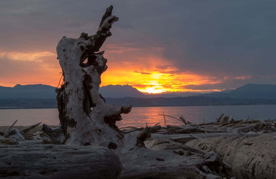 """Featured image for """"Our Best Beach This Month – Iverson Spit and Livingston Bay"""""""