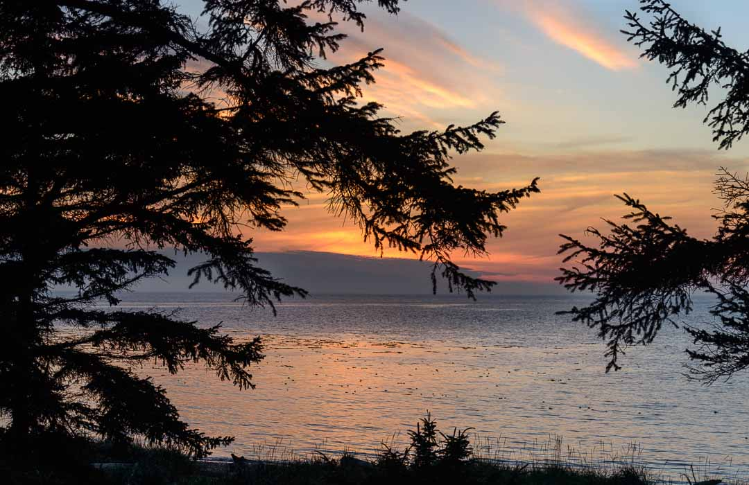 """Featured image for """"Our Best Beach This Month – Fort Ebey State Park"""""""