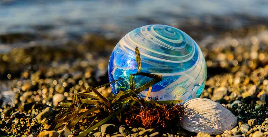 A decorated glass ball sits with seaweed and a shell on the beach.