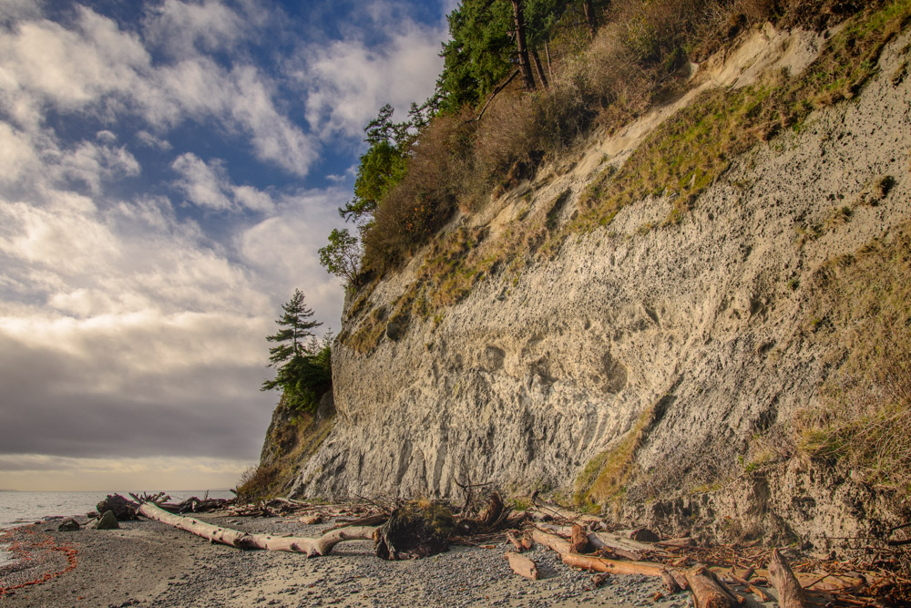 A steep, nearly vertical bluff at Possession Point State Park.