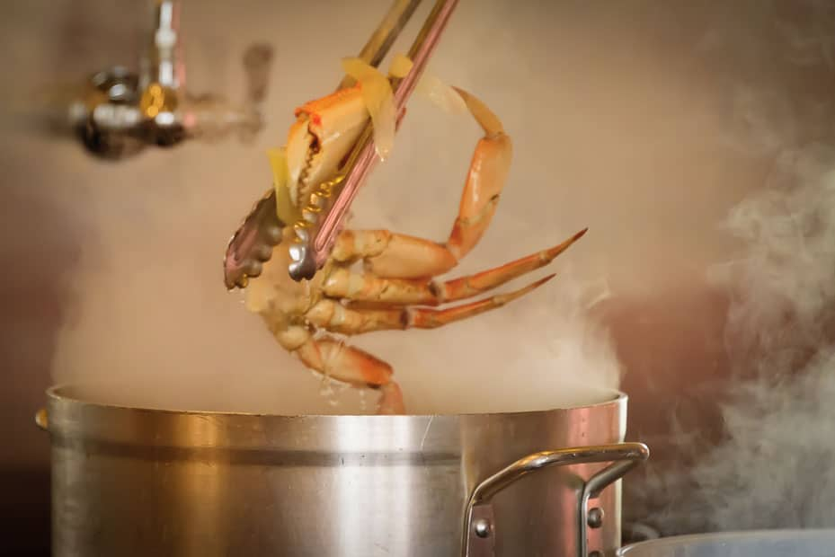 Half of a cooked crab is pulled from a pot of boiling stock.