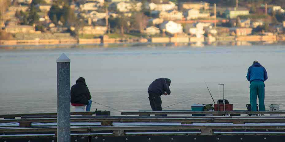 Several people standing at a dock fishing.
