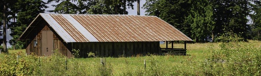 Old Barn DSC_0493