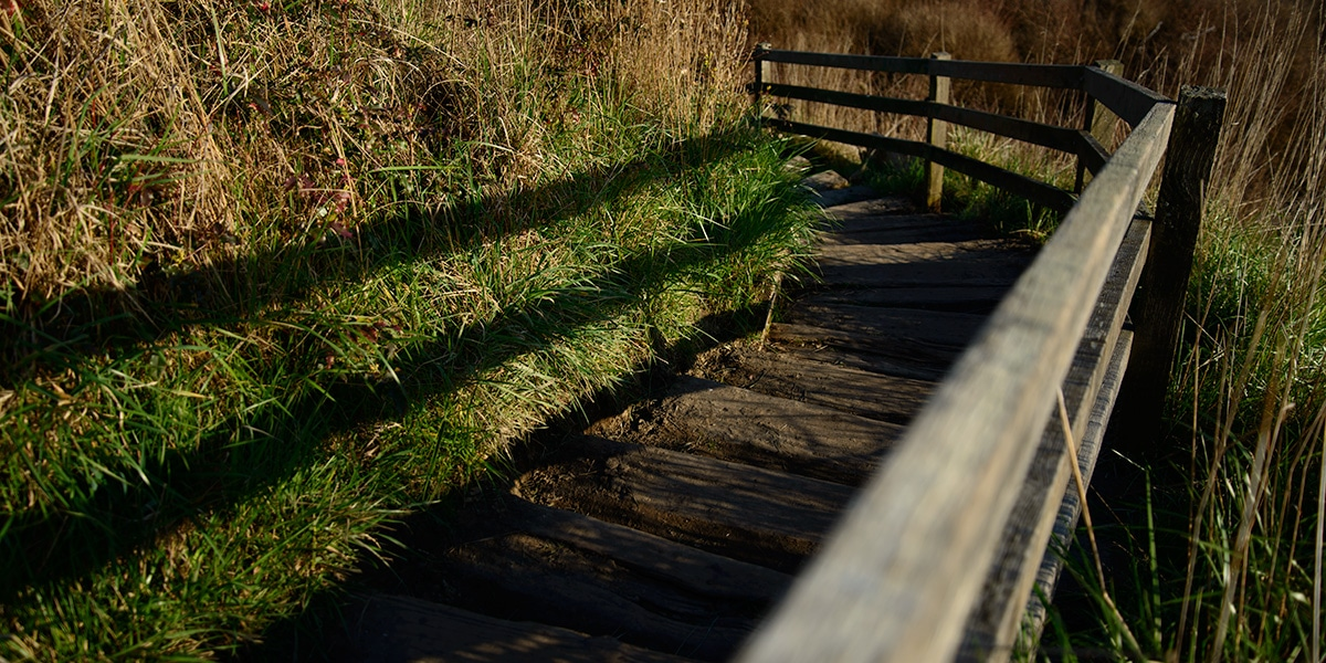 These weathered, but solid stairs are the link between the bluff trail at Ebey's landing and the beach.