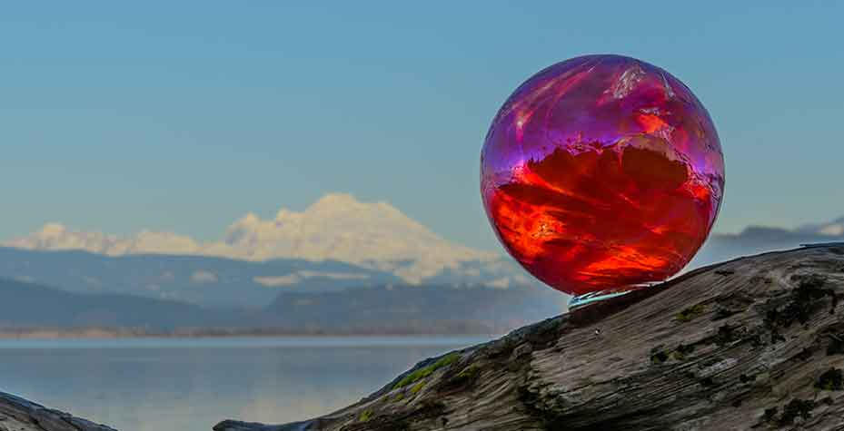 A glass ball rests on a piece of driftwood with Mt. Baker in the background.