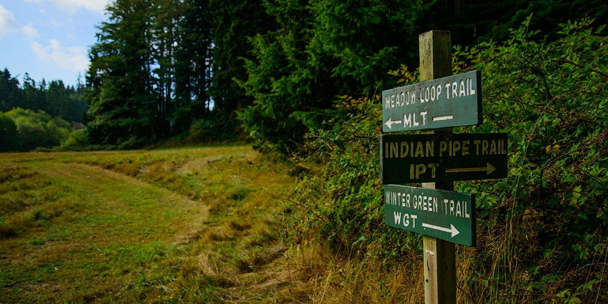 hiking whidbey and camano islands