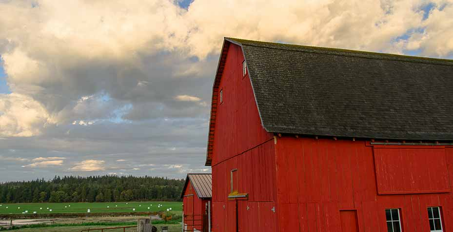 A bright red barn is backed by a sky of puffy white clouds.