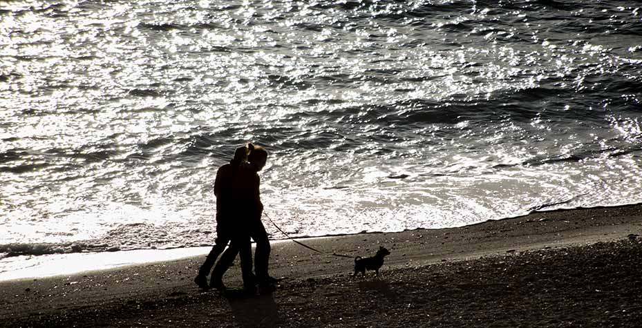 A couple and their dog walk along the beach at Ebey's Landing.