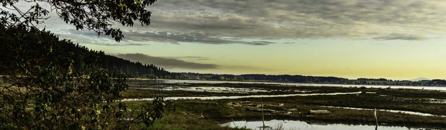 Livingston Bay PIX71361