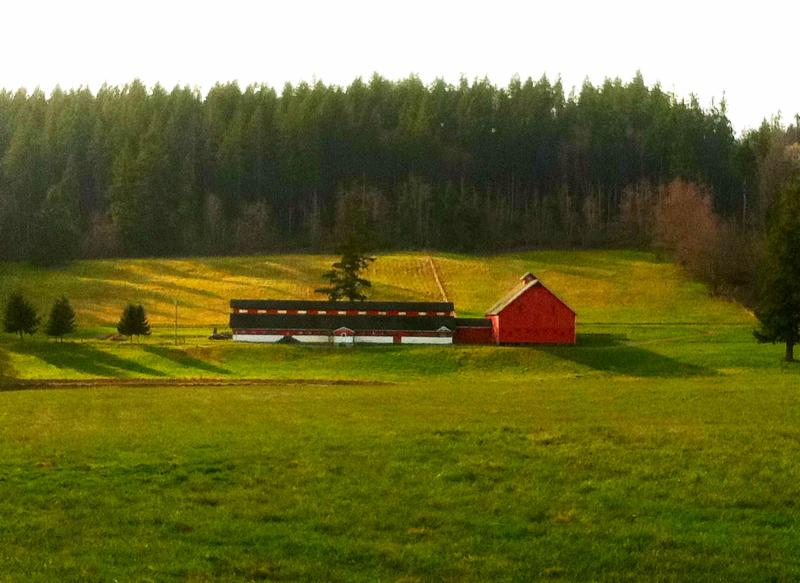 Farm To Table Whidbey And Camano Islands