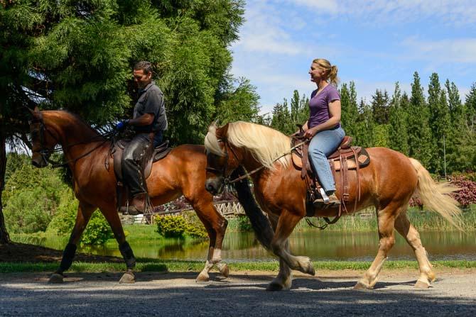 Horseback Riding_PIX2194