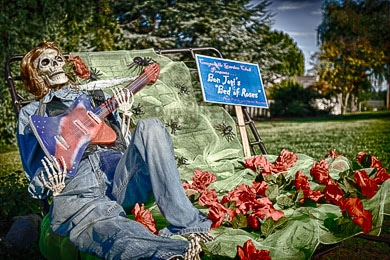 Scarecrow with skull with a rose in its mouth holding a guitar. It's on a bed matress spring with roses sprinkled about.