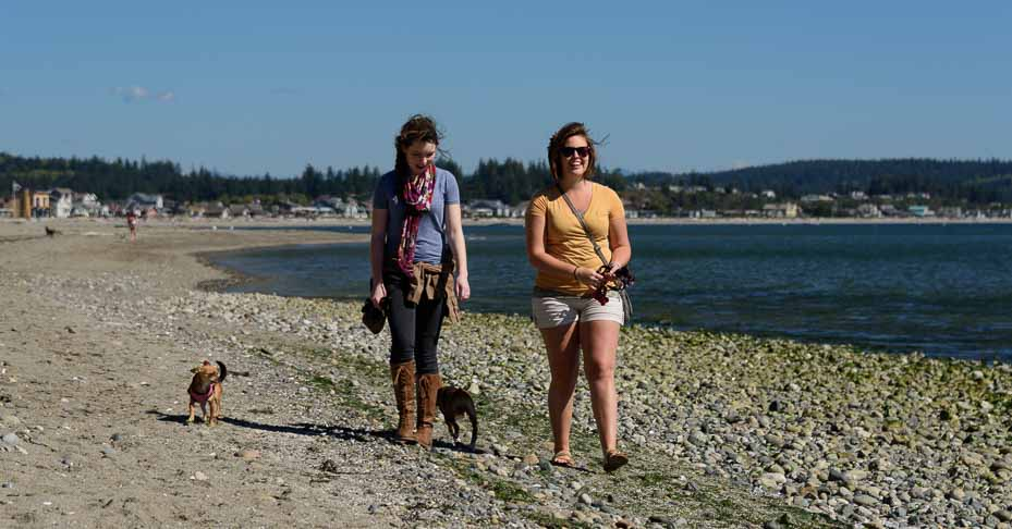 Two women walking the beach with their dogs.