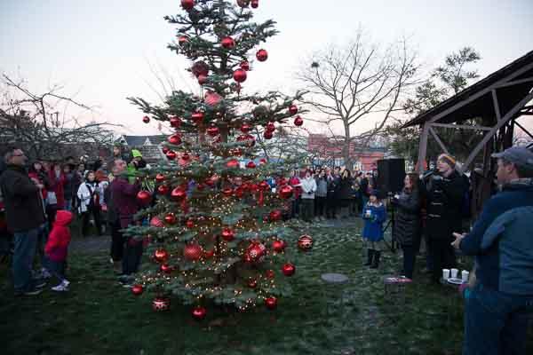 langley-tree-lighting_pix9366