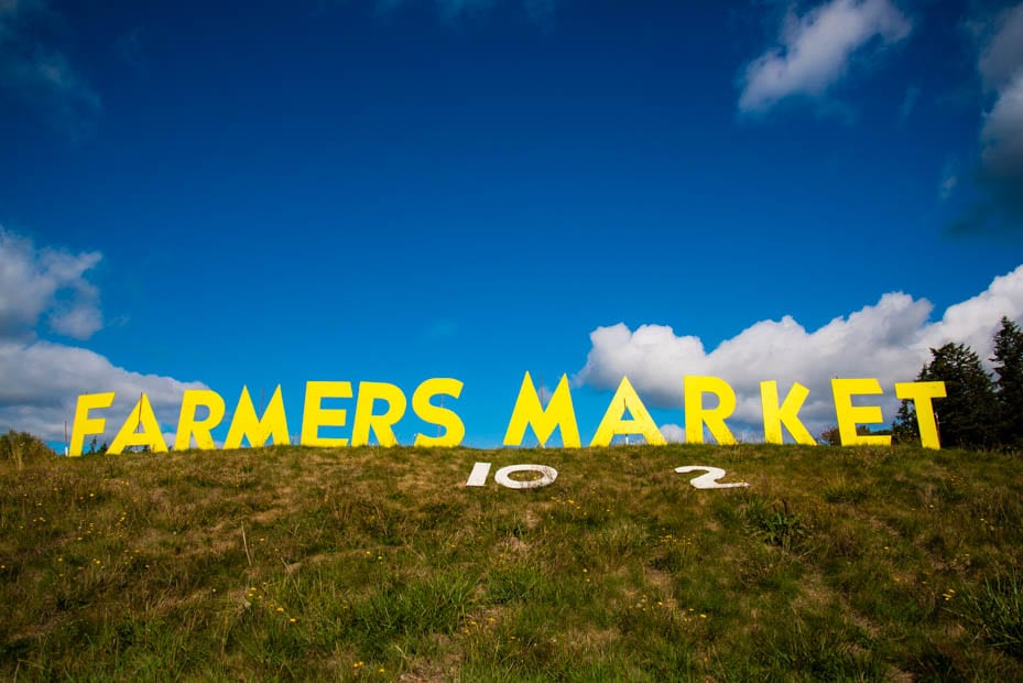 bayview-farmers-market_pix8730