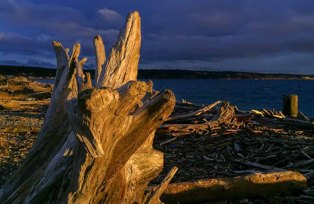 """Featured image for """"Our Best Beach This Month – Driftwood Park"""""""