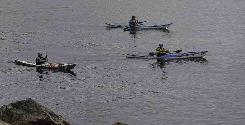 3 Kayakers in the water