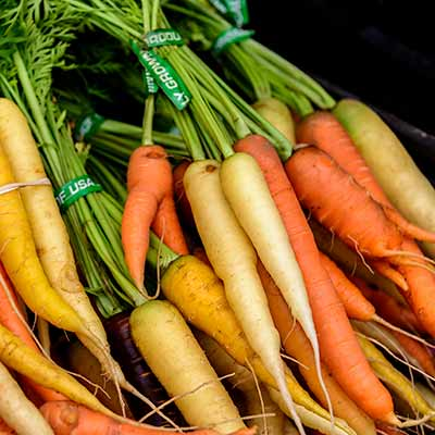 Several bunches of various-colored carrots.