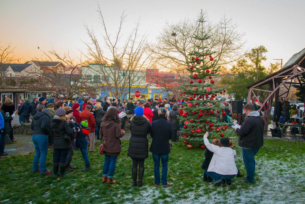 People gather in a park for carol singing and a tree lighting.