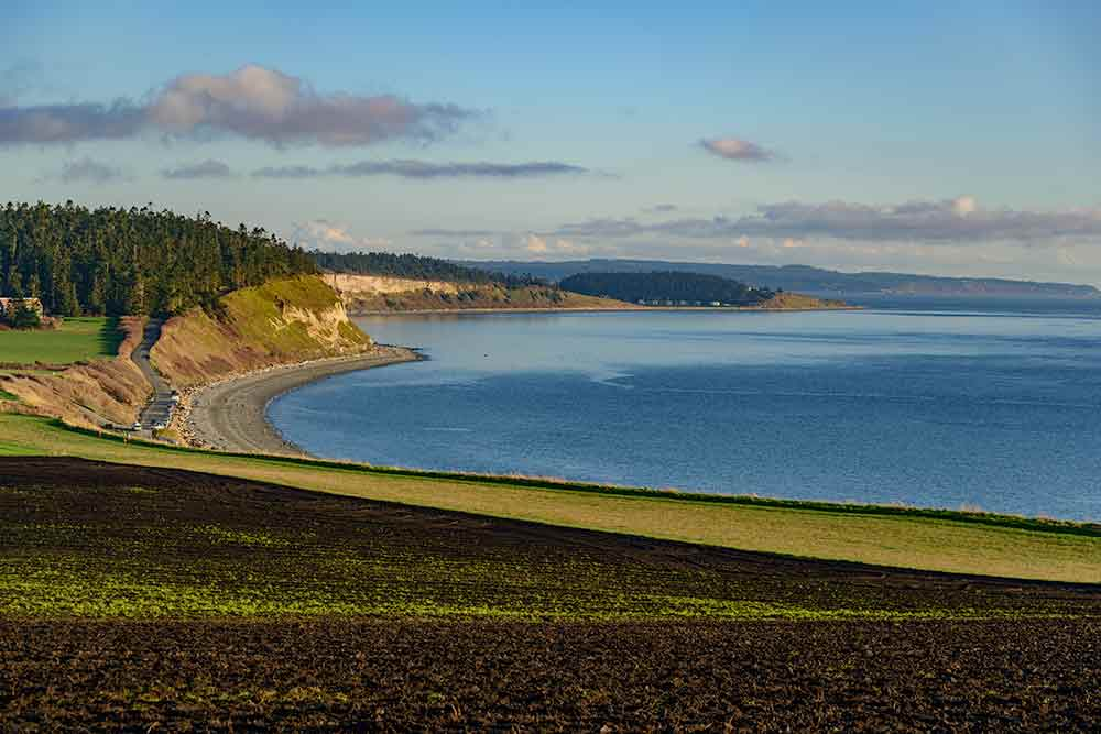 A view of Ebey's Landing, seen from the bluff trail.