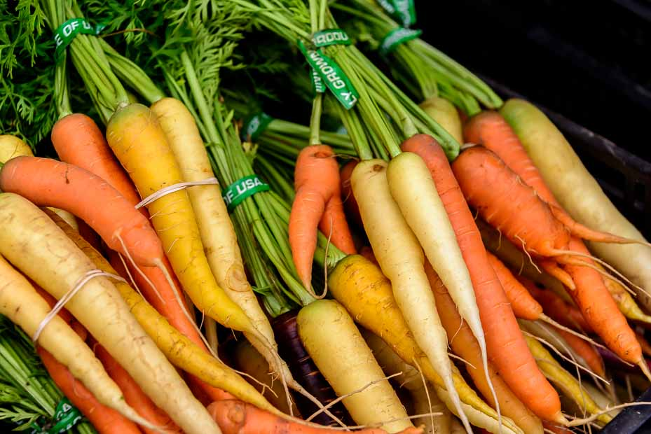 Various shades of carrots are bundled together