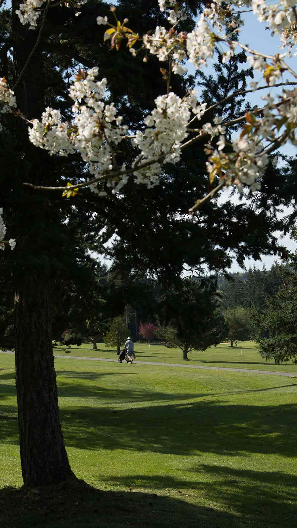 Camaloch Golf Course on Camano Island