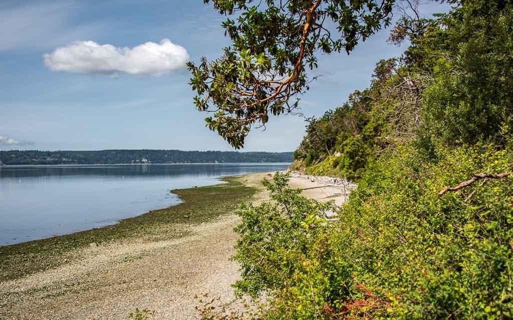 Camano-Island-State-Park-4545
