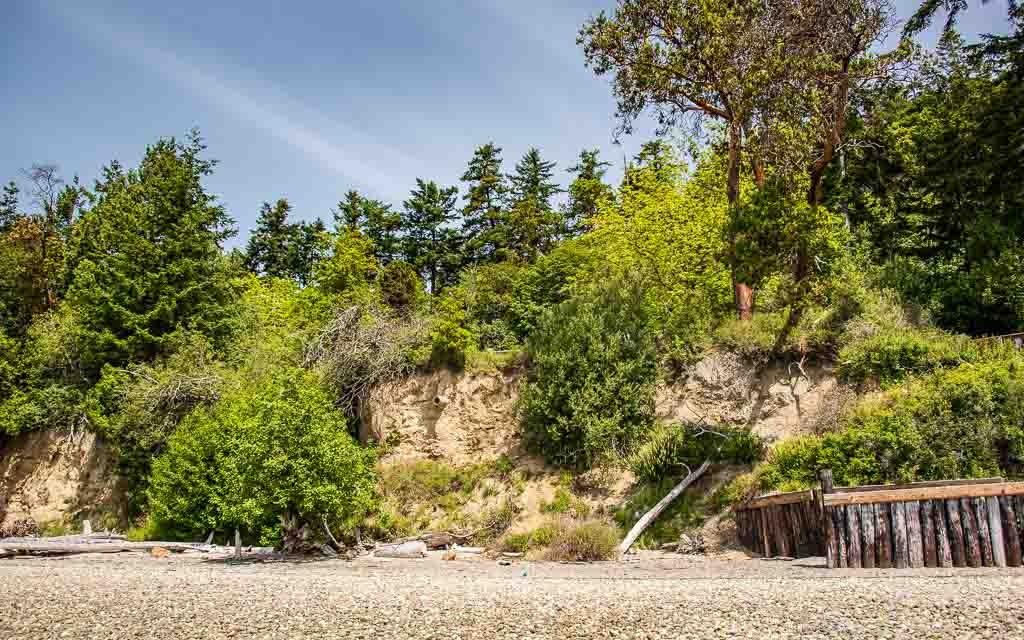 Camano-Island-State-Park-4547