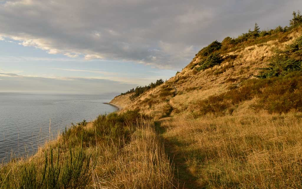 Fort-Ebey-State-Park-8708