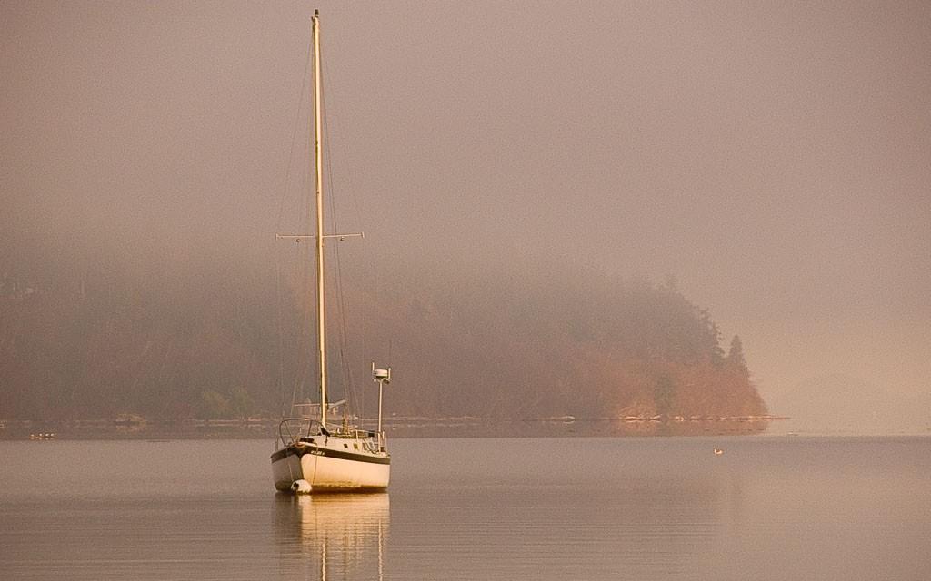 Freeland-Park-Holmes-Harbor-2