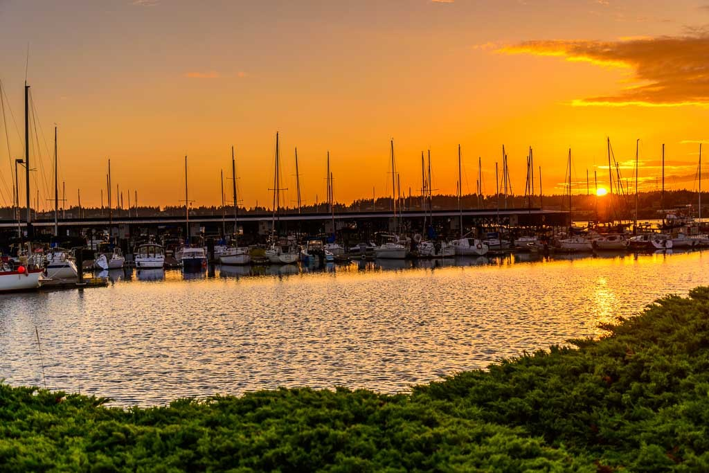 Oak-Harbor-Marina-8422