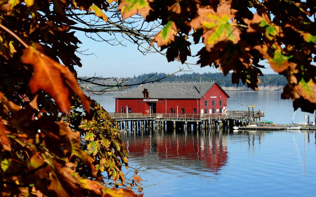 Coupeville-Wharf-3296