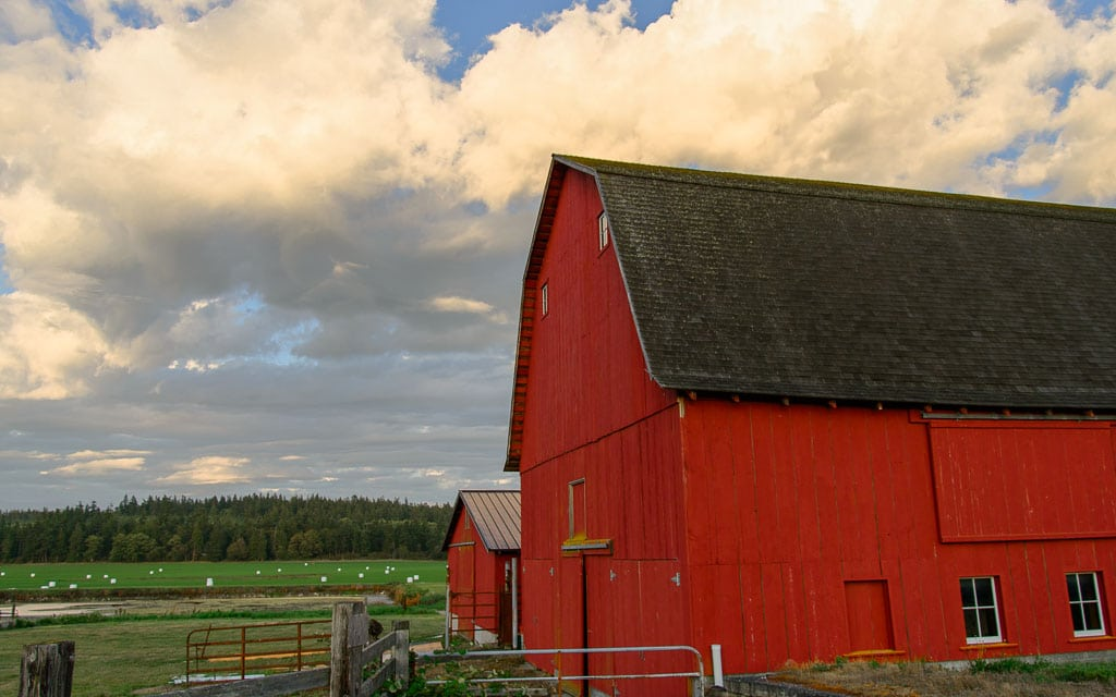 An historic barn on Ebey's Reserve.