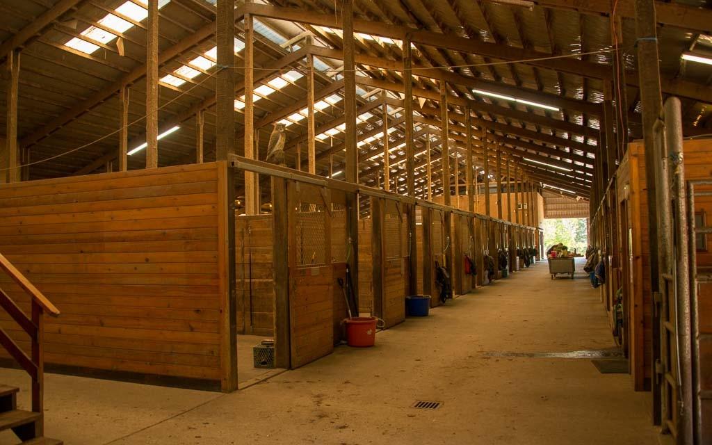 Wildwood-Farms-2232