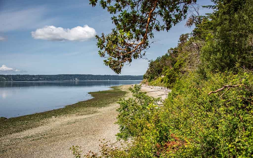 Camano-Island-4545