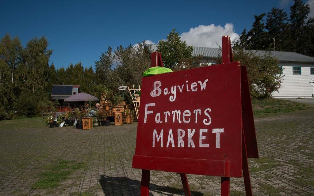 Bayview-Farmers-Market-8739