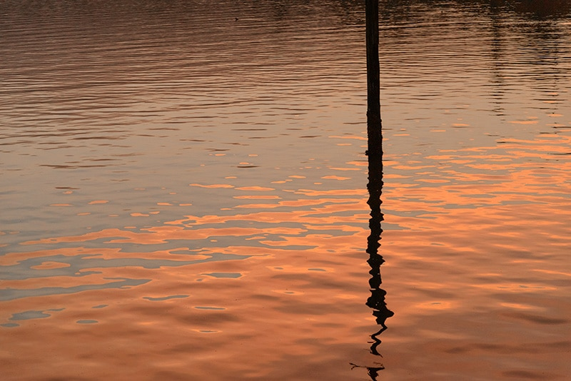 The water glows in Penn Cove reflecting the morning sunlight.
