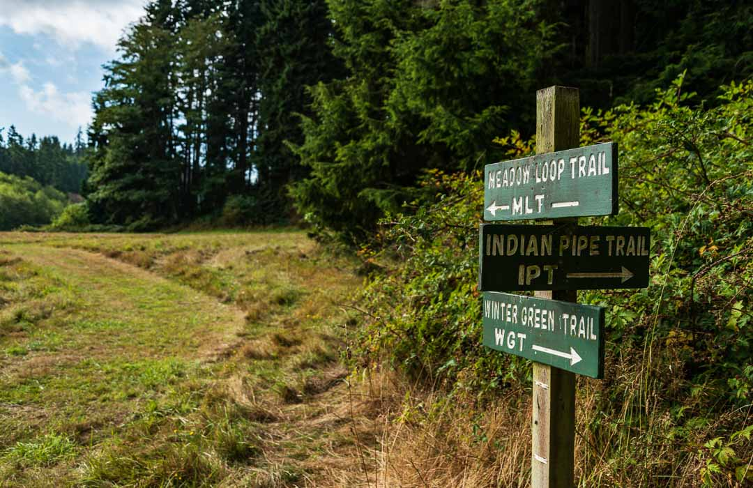 Hiking Trail with directional signs