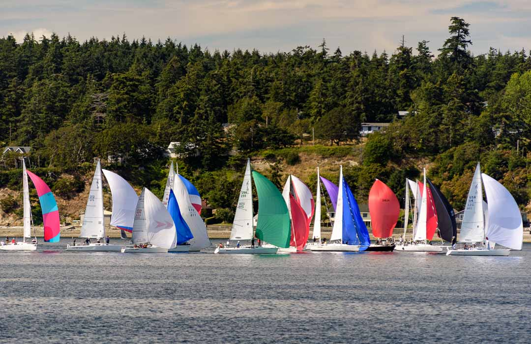 Many sailboats in Penn Cove