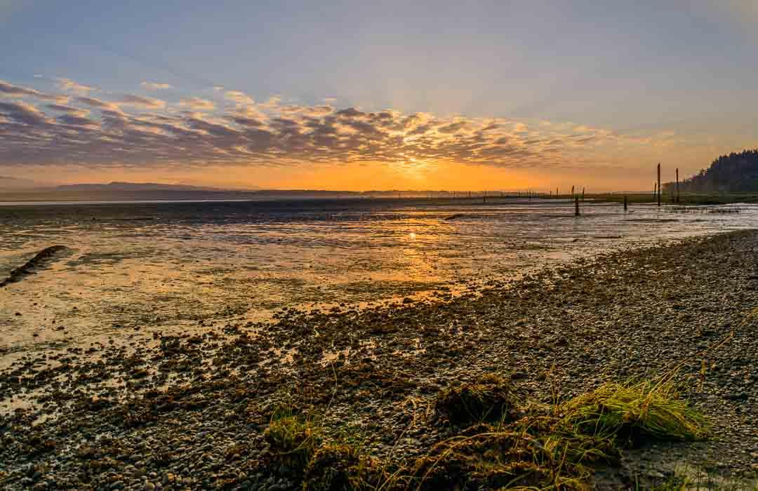 Sunrise over a beach at English Boom