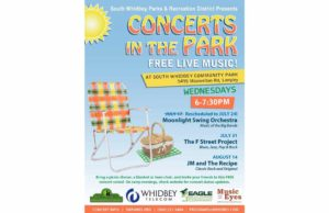 Concerts in the Park Poster