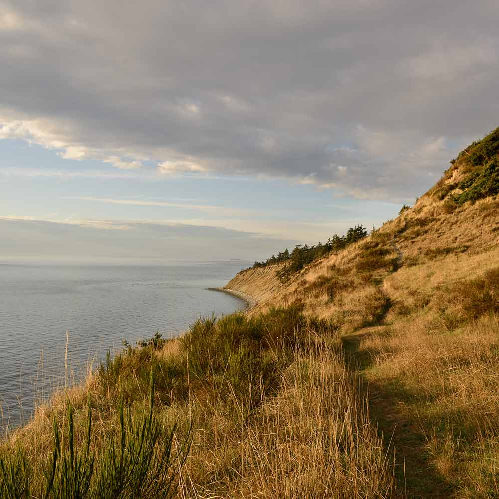 The Bluff Trail at Fort Ebey