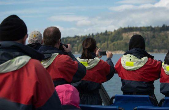 Aboard the Island Whaler PIX8114 552x358