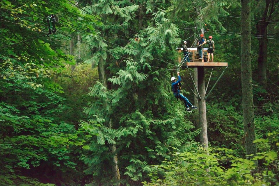 Canopy Tours Northwest 3811