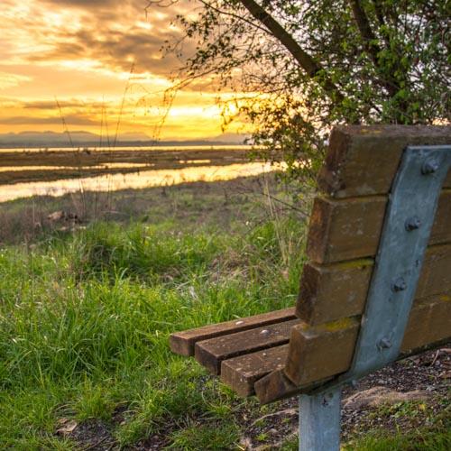 Bench at Livingston Bay