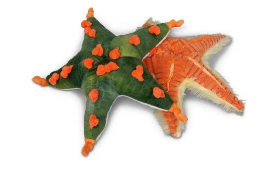 Plush Starfish 552x345