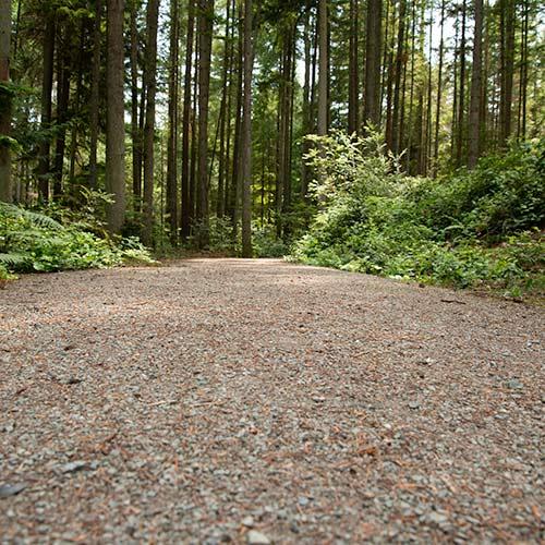 The gravel path for the Trustland Trail