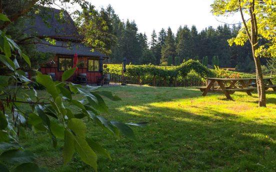 Whidbey Island Winery IMG 0189 552x345
