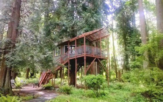 Treehouse Retreat 552x345